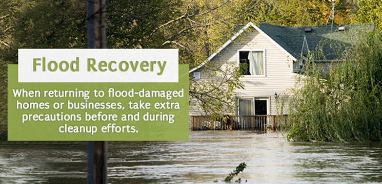 When returning to flood-damaged homes or businesses, take extra precautions before and during cleanup efforts.