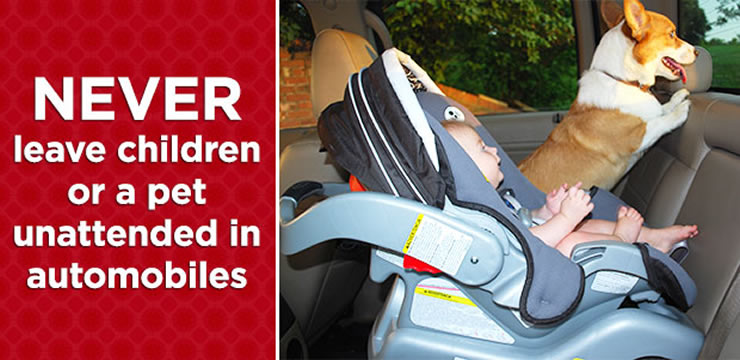 Never leave children or a pet unattended in automobiles