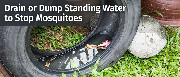 What to do with standing water after a flood