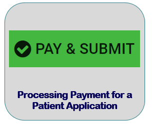 Processing Payment for a Patient Application